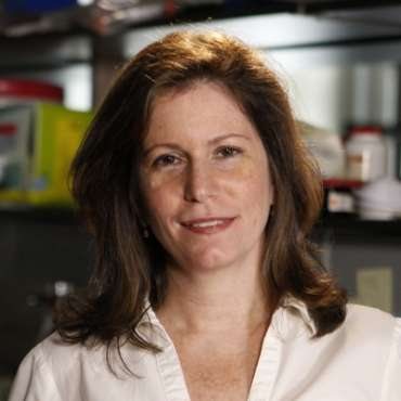 Dr. Sheila Nirenberg was awarded a MacArthur Fellowship for her work on how the brain encodes visual information.