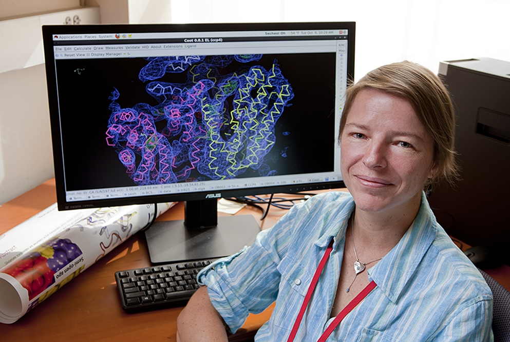 Dr. Olga Boudker's Work with Glutamate Pumps Earns her Membership in an Elite Cadre of Investigators